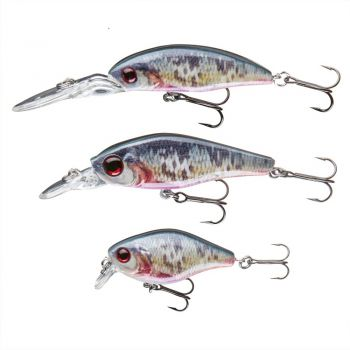 "Cormoran Realfish Wobbler Set ""Dying Roach"" (53-00025)"